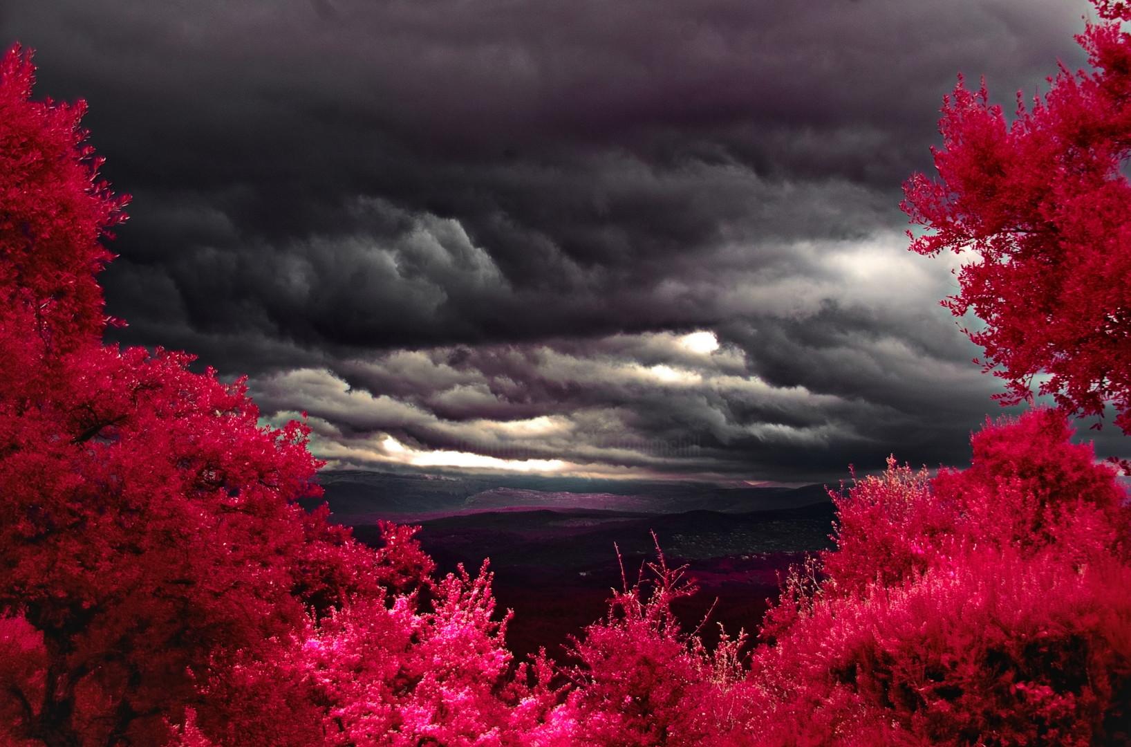 Steevens Hill - Infra Storm