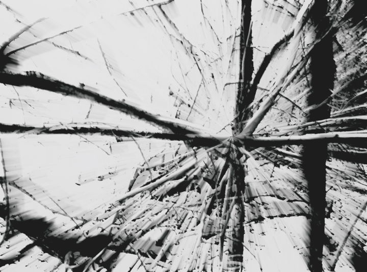 Steevens Hill - Vision Flottée
